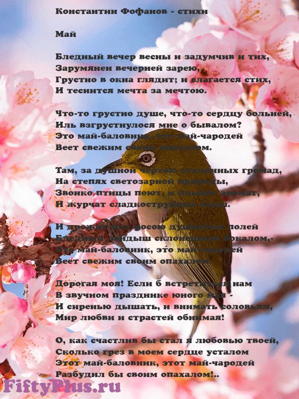 Константин Фофанов - Май