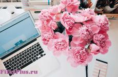 День блога или привет, мой блог!